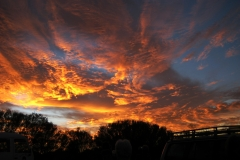 456 - Australian dawn