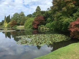 451 Autumn Walk at Sheffield Park