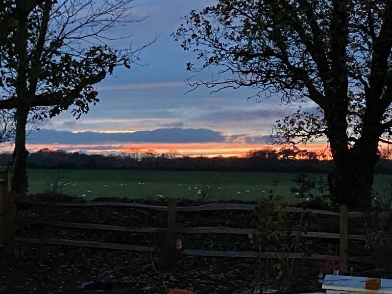453 Garden Autumn Sunset