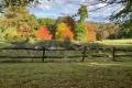439 Autumn Colours