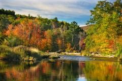 435 Autumn on Thornton River